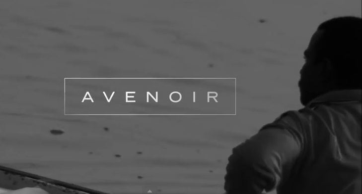 Avenoir The Desire To See Memories In Advance