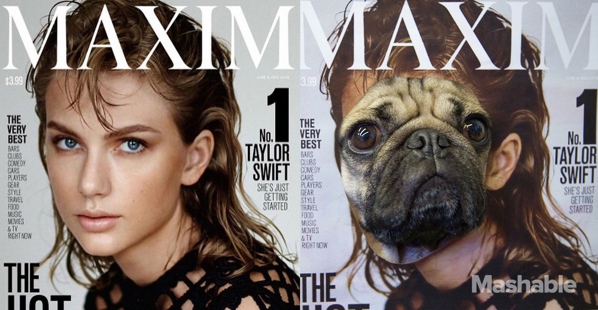 DOUG-THE-PUG-taylor-swift-maxim cover feature