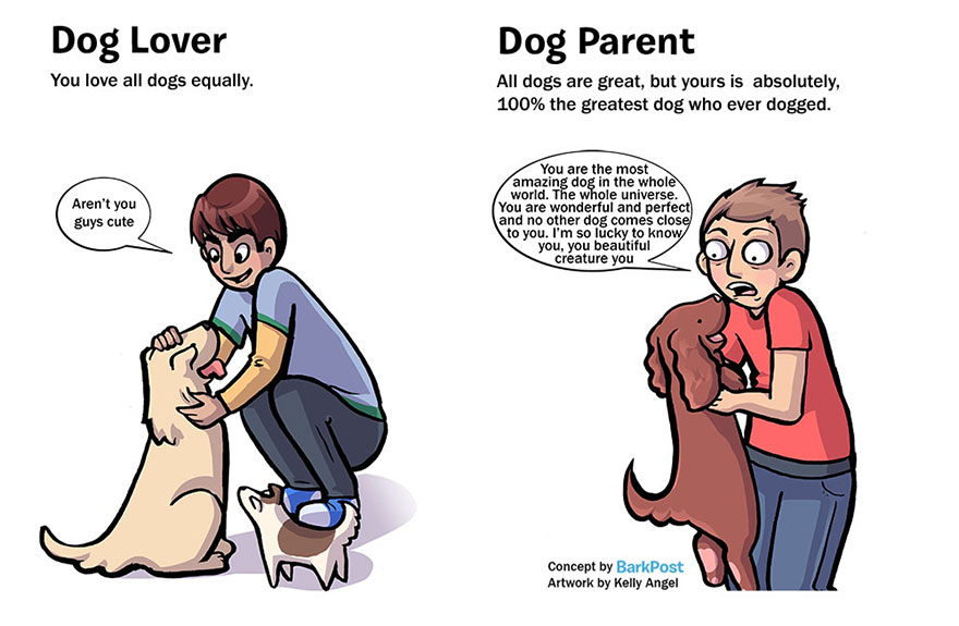 Differences Between Dog Lovers And Dog Parents (2)