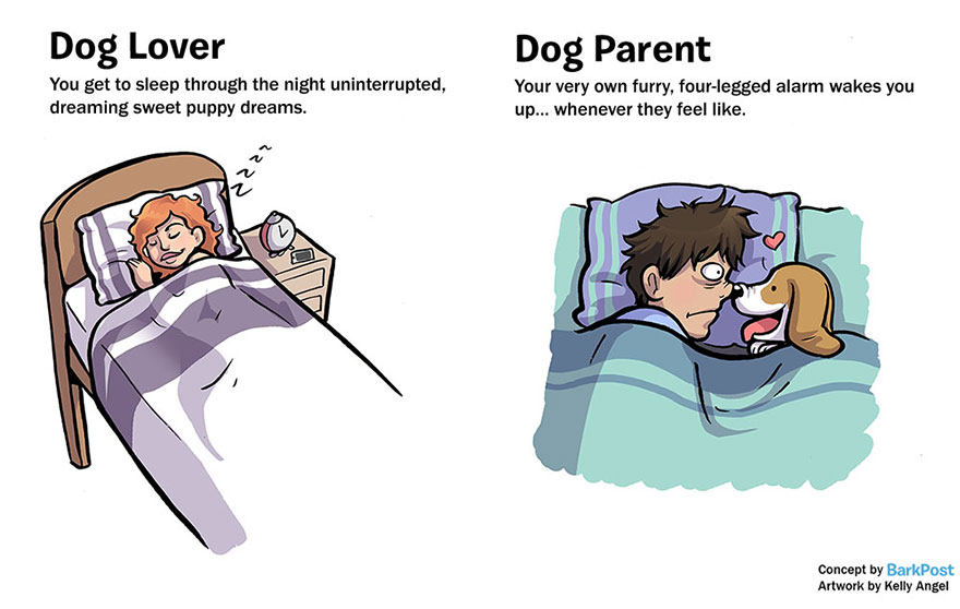 Differences Between Dog Lovers And Dog Parents (3)