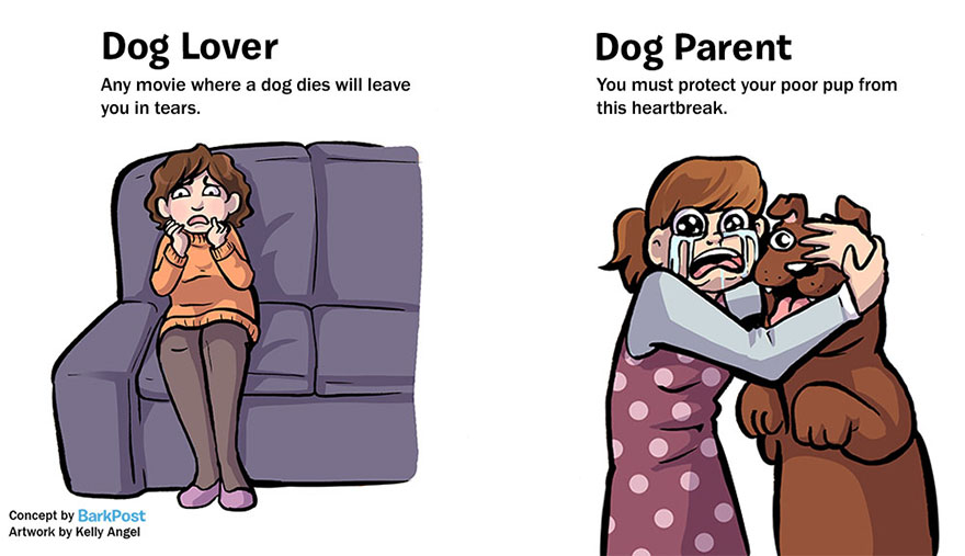 Differences Between Dog Lovers And Dog Parents (4)