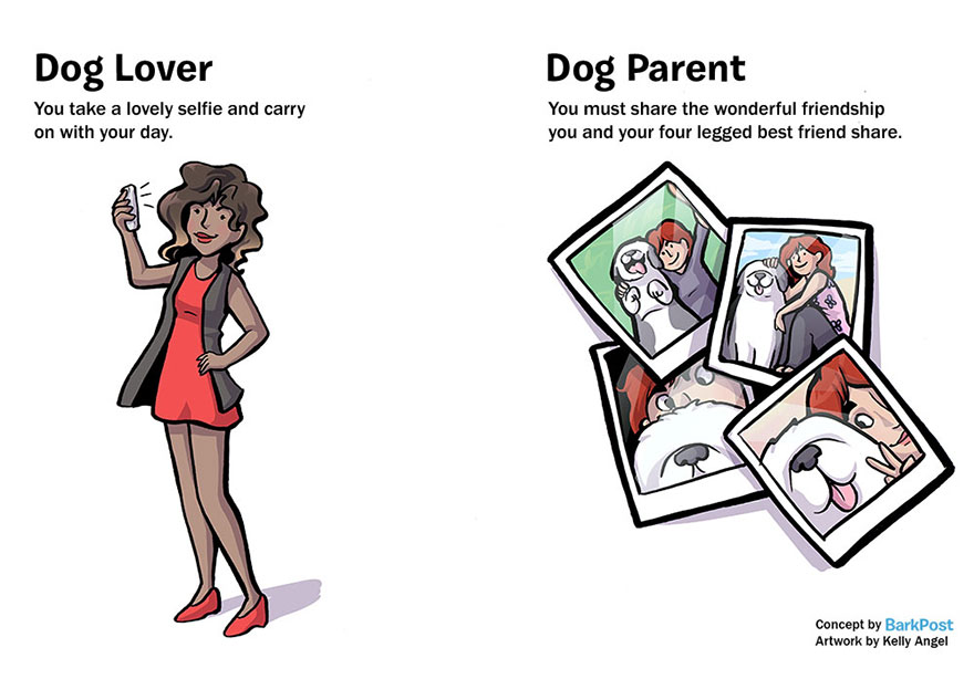 Differences Between Dog Lovers And Dog Parents (5)