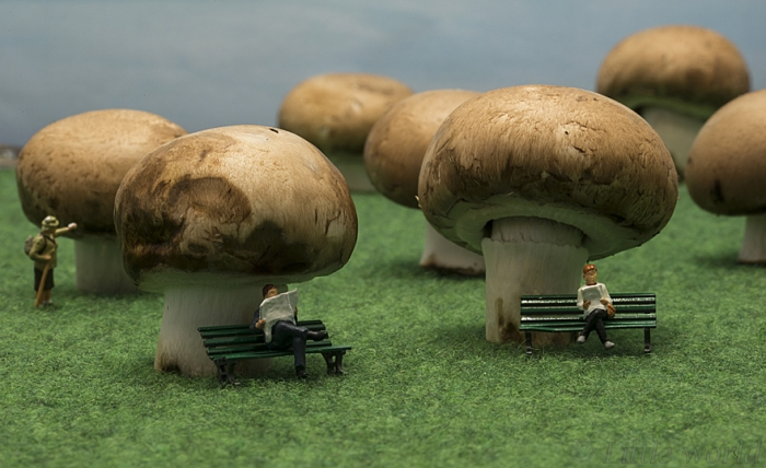Everyday Lives Of Miniature People (1)