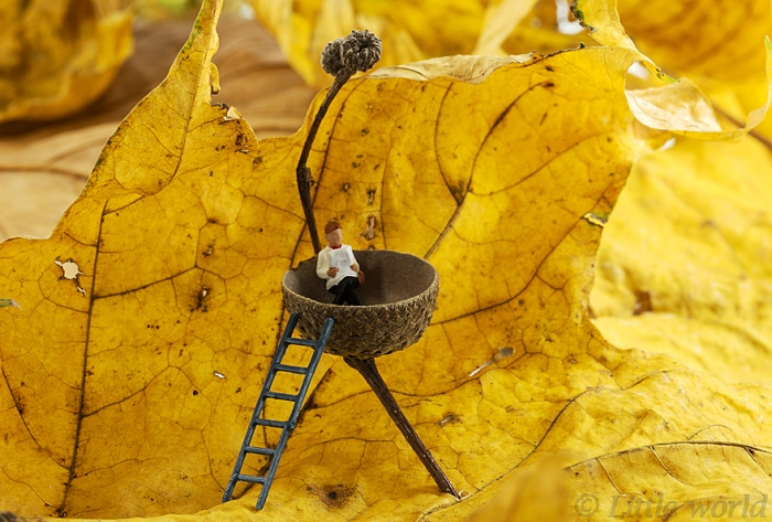 Everyday Lives Of Miniature People (11)