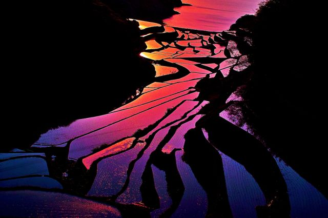 Great rice terraces with sunset, China