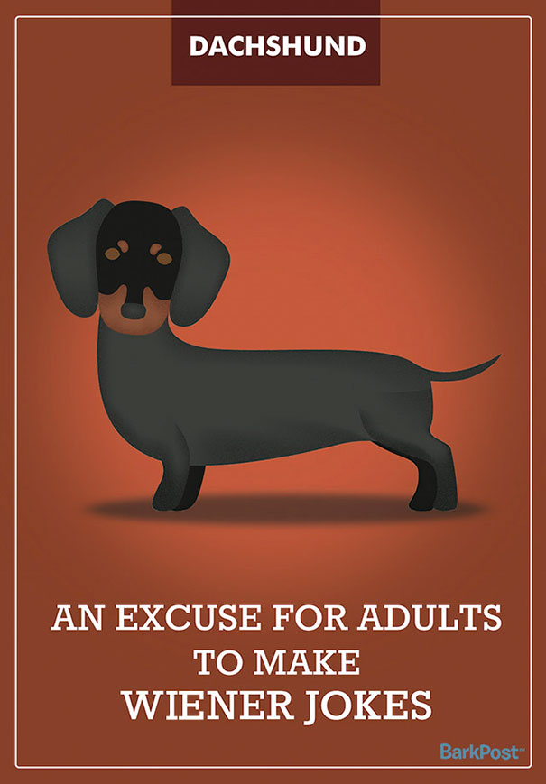 Honest Dog Breed Slogans  (10)