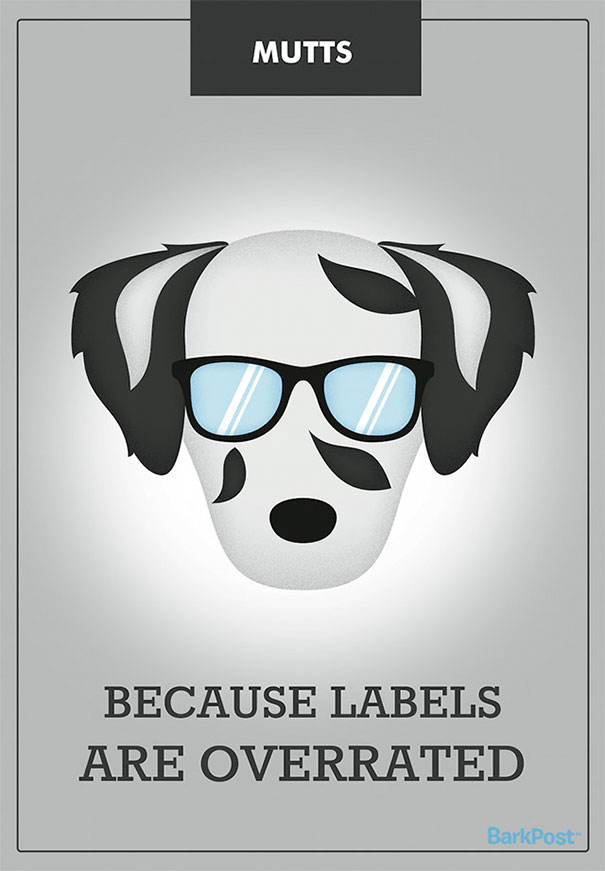 Honest Dog Breed Slogans  (5)