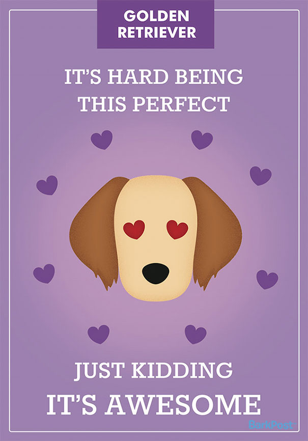 Honest Dog Breed Slogans  (6)