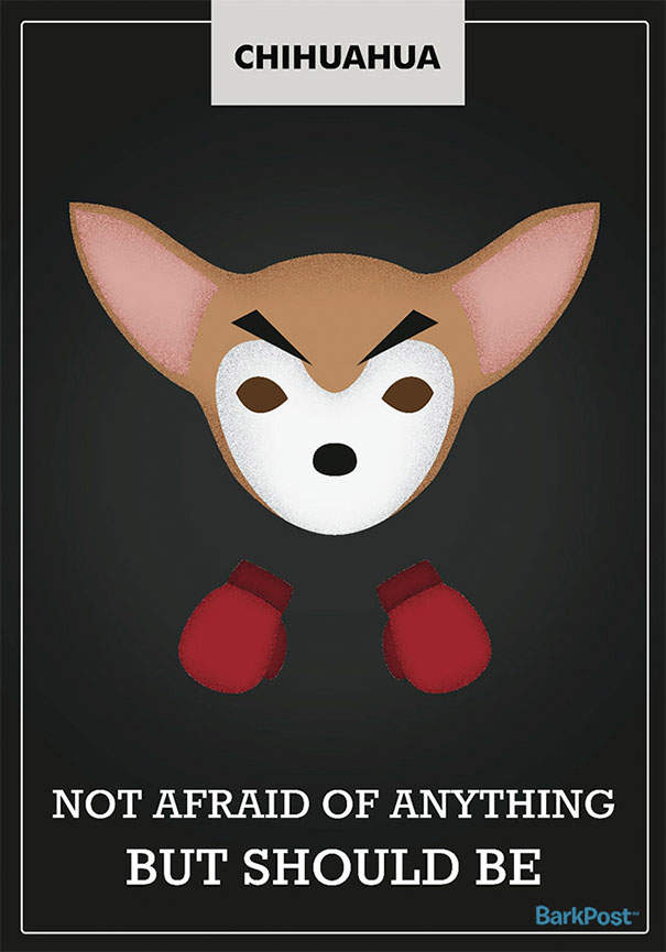 Honest Dog Breed Slogans  (7)