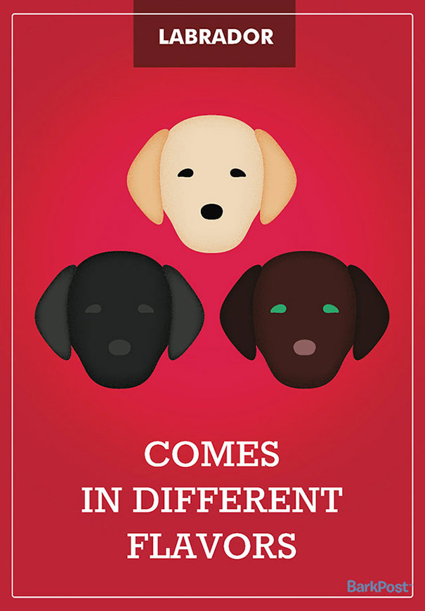 Honest Dog Breed Slogans  (8)