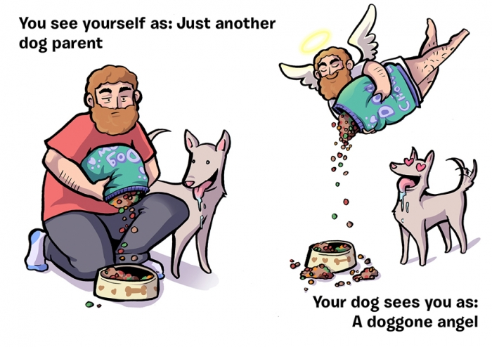 How You See Yourself vs How Your Dog Sees You (2)