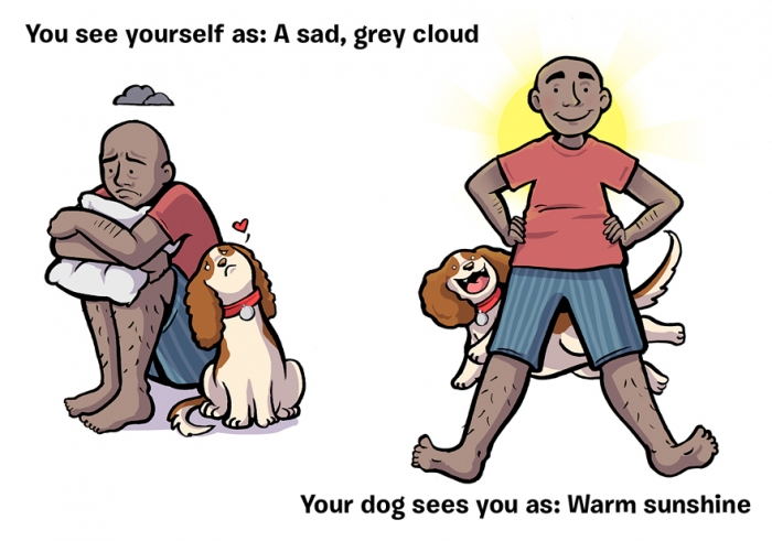 How You See Yourself vs How Your Dog Sees You (9)
