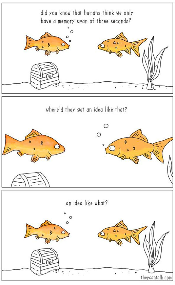 If animals could talk (6)