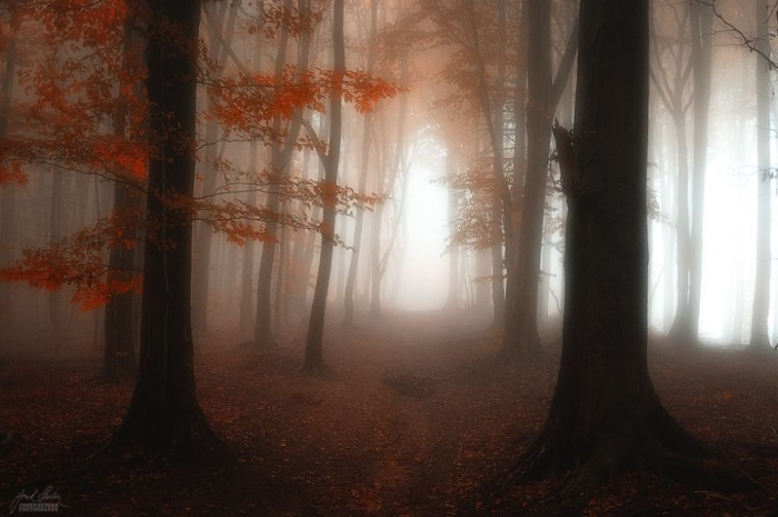 Janek Sedlar landscape photography surrel twist 10