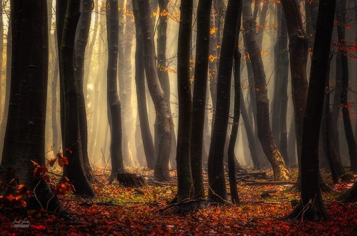 Janek Sedlar landscape photography surrel twist 19