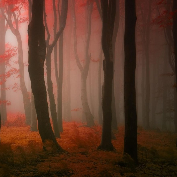 Janek Sedlar landscape photography surrel twist 4
