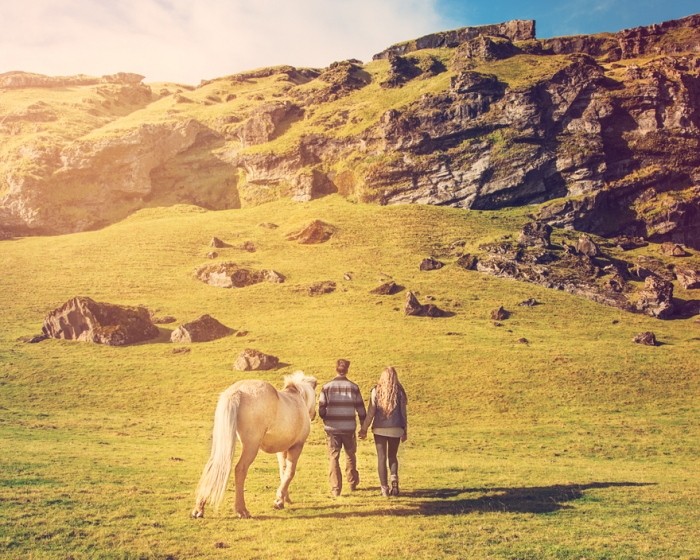 Jeremy and Rachelle got married in iceland.jpg pony