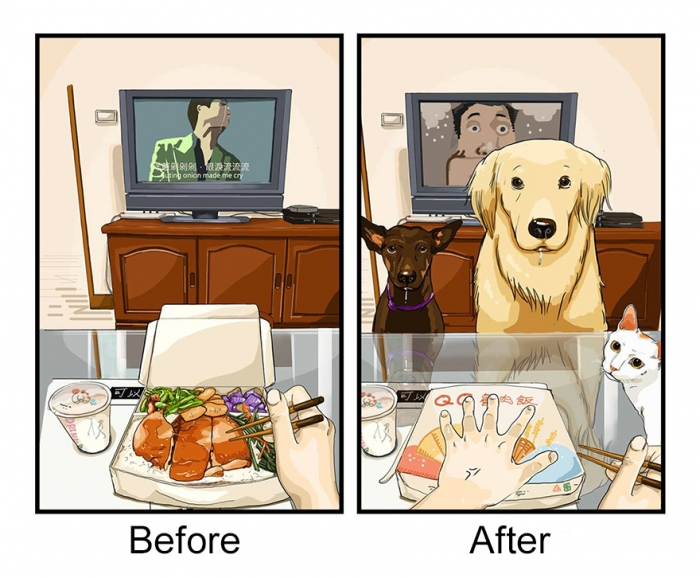 Life Before And After Getting A Dog (1)