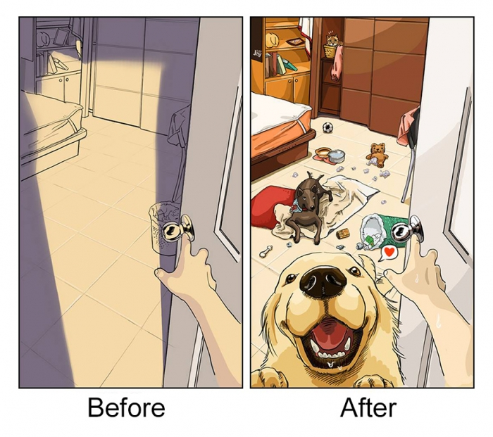 Life Before And After Getting A Dog (3)