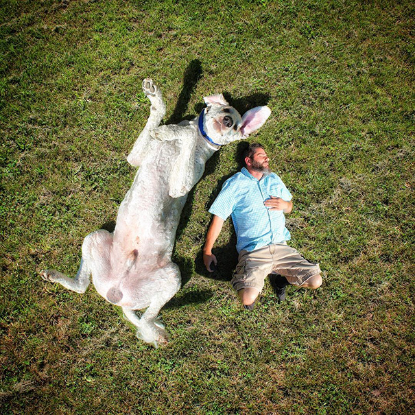 Photographer Photoshops His Dog Into A Giant (12)