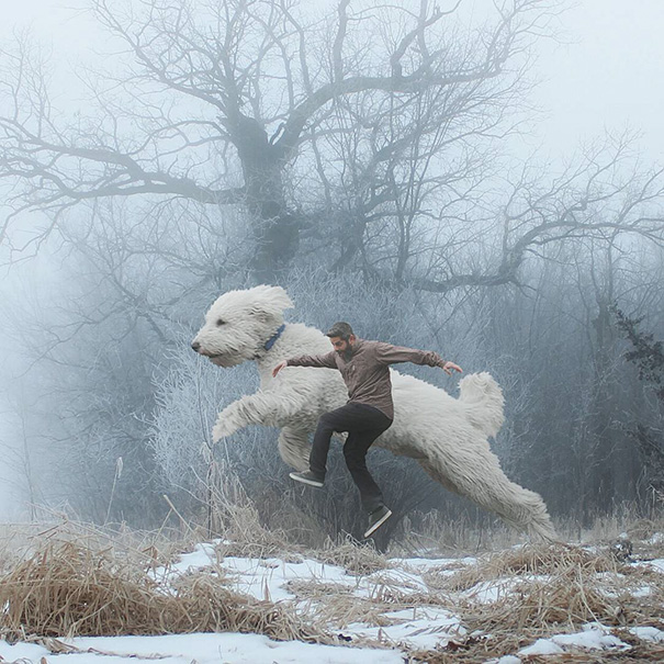 Photographer Photoshops His Dog Into A Giant (16)