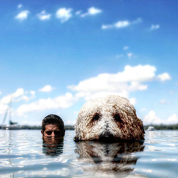 Photographer Photoshops His Dog Into A Giant (17)