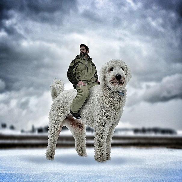 Photographer Photoshops His Dog Into A Giant (6)