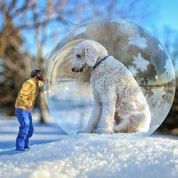 Photographer Photoshops His Dog Into A Giant (8)
