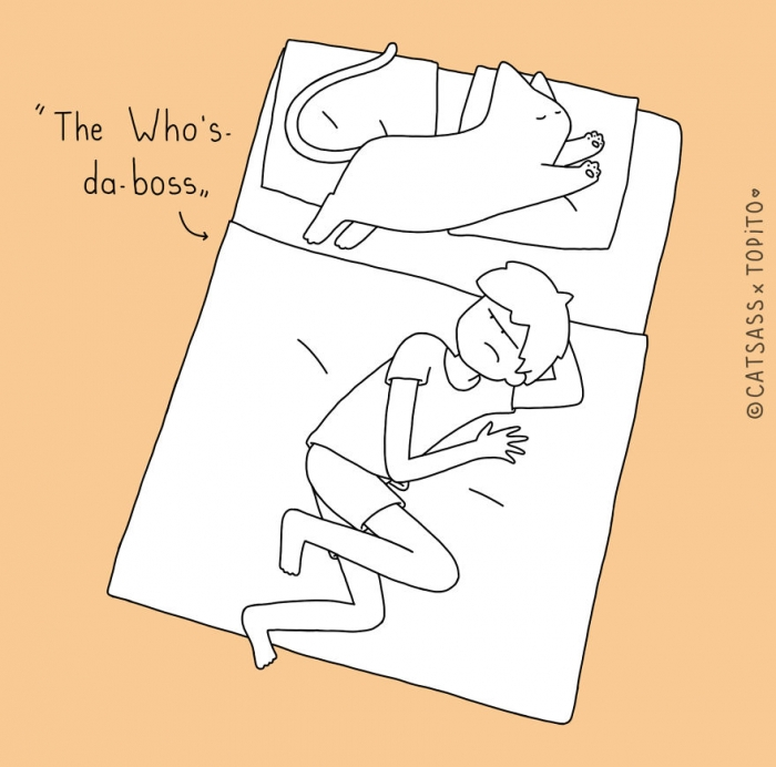 Positions To Sleep With Your Human (2)