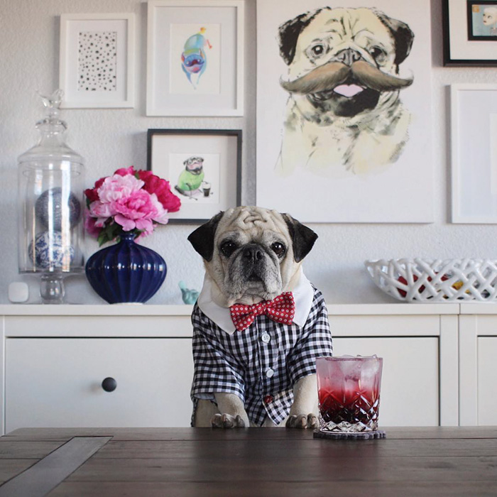 The Most Stylish Bartender (15)