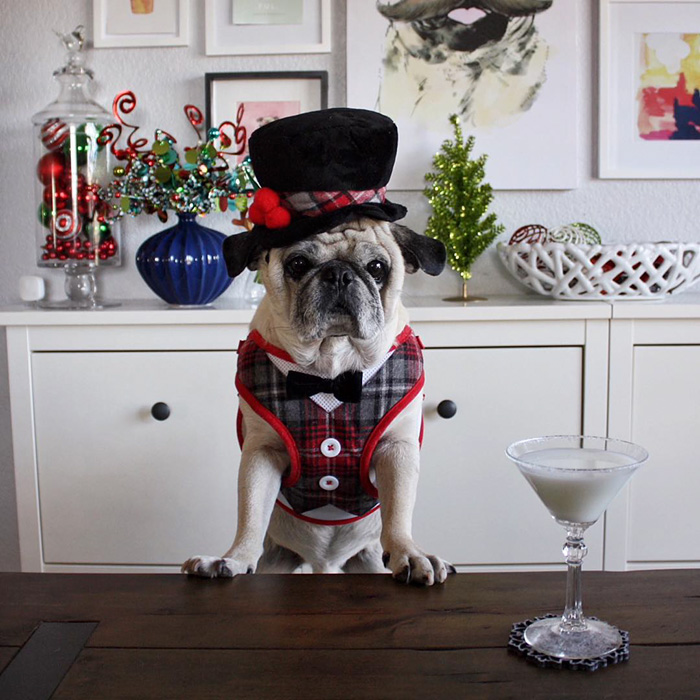 The Most Stylish Bartender (4)