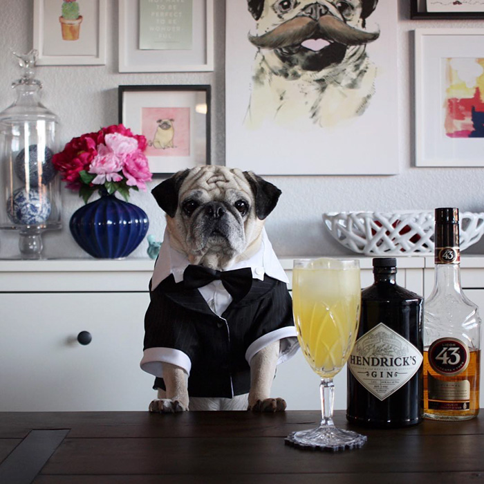 The Most Stylish Bartender (6)