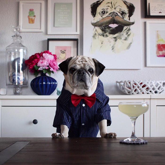 The Most Stylish Bartender (9)