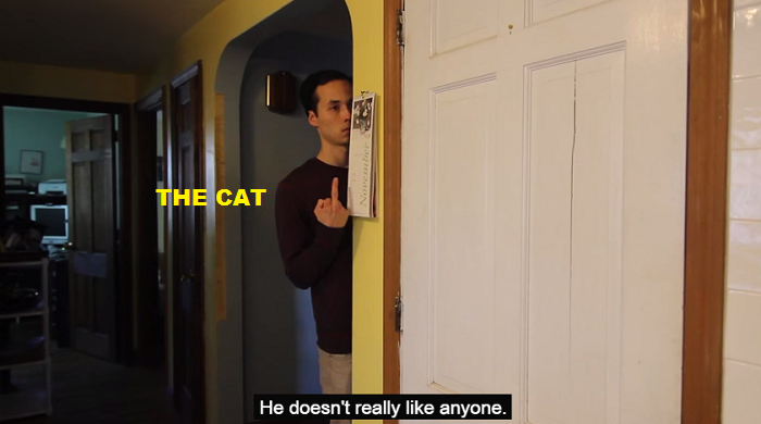 The cat doesn't like anyone