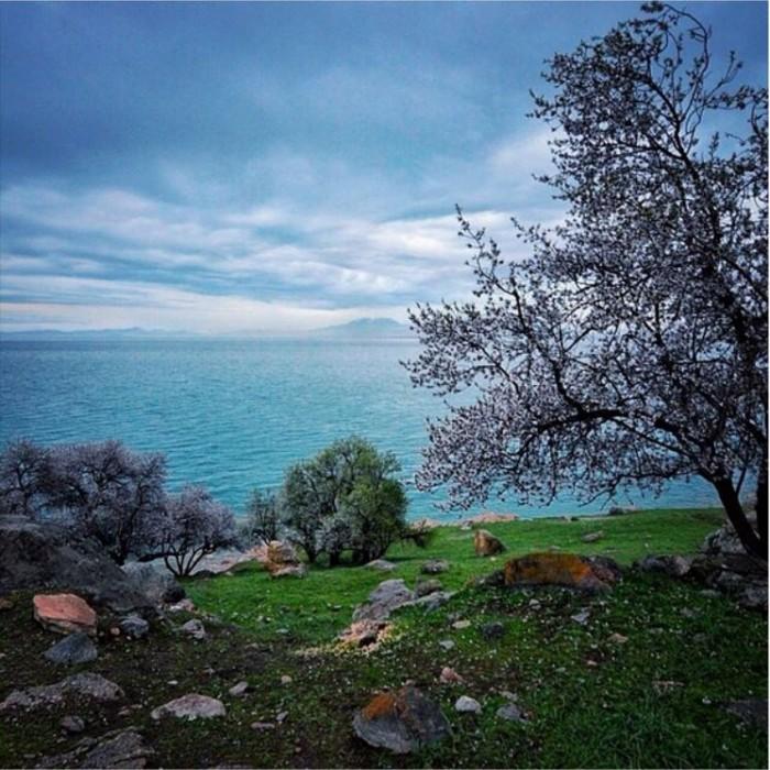 Turkey Pics 29