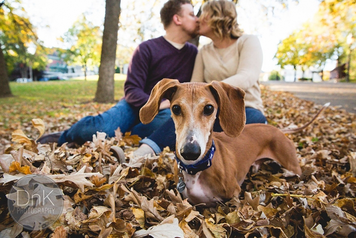 Wiener Dog Photobombs Couple's Engagement Photos (1)