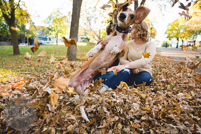 Wiener Dog Photobombs Couple's Engagement Photos (2)