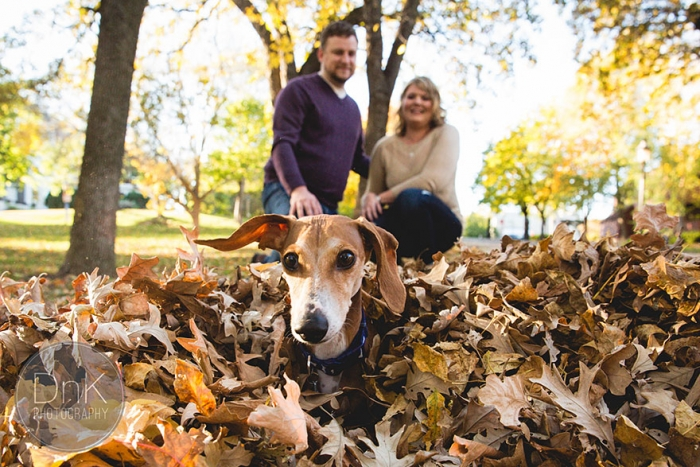 Wiener Dog Photobombs Couple's Engagement Photos (6)