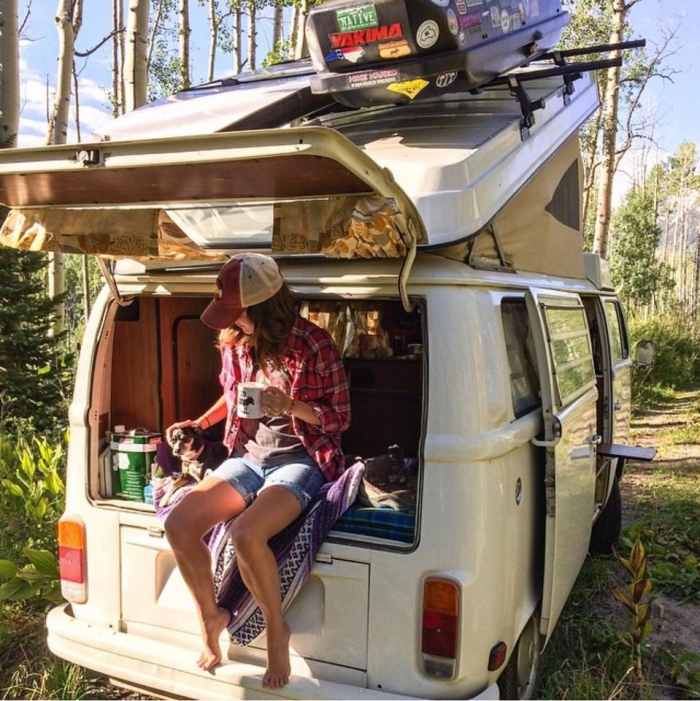 camping with dogs van