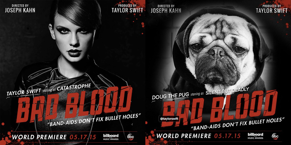 doug-the-pug-bad-blood