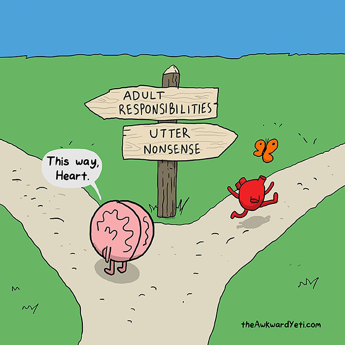 heart-and-brain-web-comic-awkward-yeti-nick-seluk-responsibilities