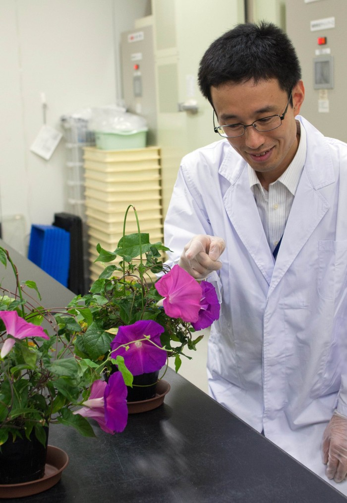 CORRECTION-JAPAN-BIOTECHNOLOGY-HORTICULTURE-GENETICS