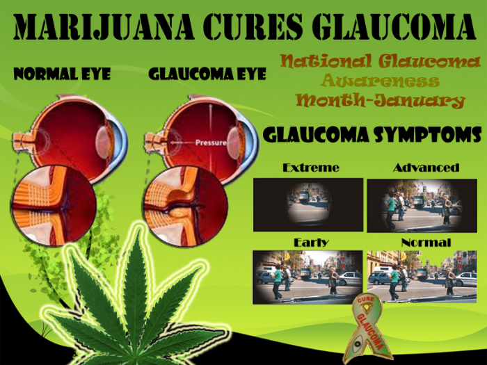 marijuana-cures-glaucoma