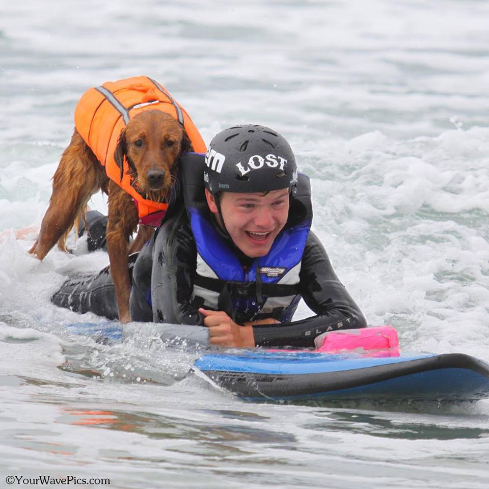 surf dog Ricochet with Patrick