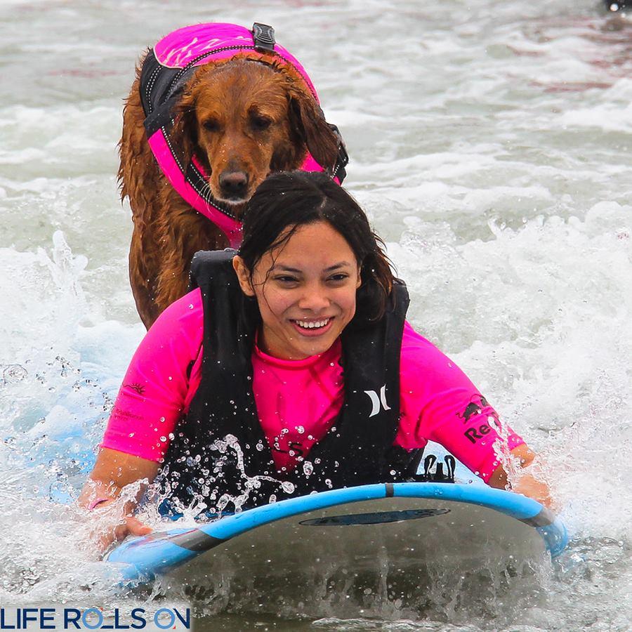 surf dog ricoceht life rolls on