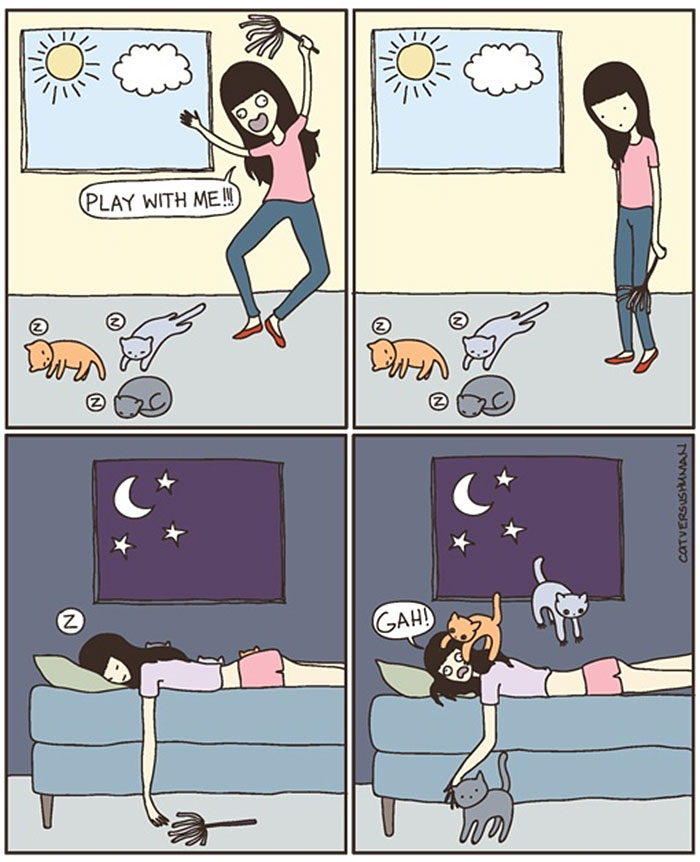 the-reality-of-owning-a-cat-play with me
