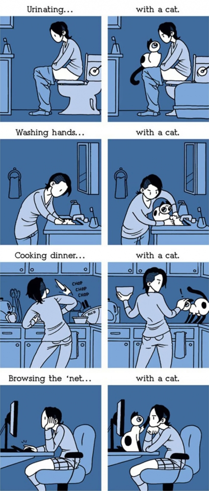 the-reality-of-owning-a-cat-with a cat
