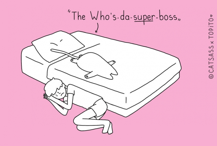 the whos the super boss