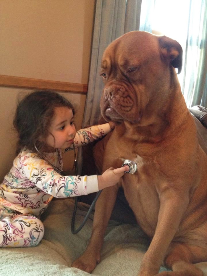 why kids need pets (3)