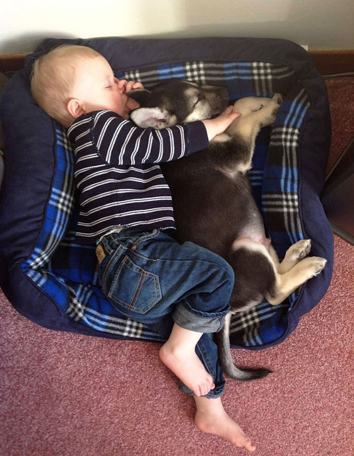 why kids need pets (5)